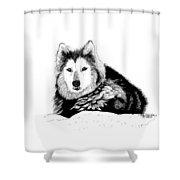 Huskie In The Snow Shower Curtain