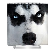 Husky Dog Art - Bat Man Shower Curtain
