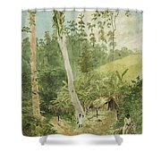 Hut In The Jungle Circa 1816 Shower Curtain by Aged Pixel
