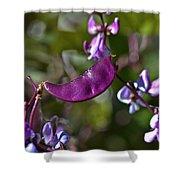 Hyacinth Bean Shower Curtain