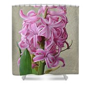 Hyacinth Pink Shower Curtain
