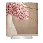 Hyazinth In A Vase Shower Curtain