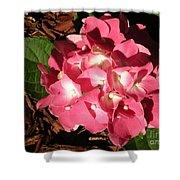 Hydrangea Flower Shower Curtain