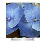 Hydrangea Flower Set Shower Curtain