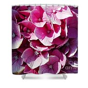 Hydrangea Lavender Petals Shower Curtain