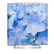 Hydrangea Macrophylla  Shower Curtain