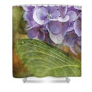 Hydrangea Portrait Shower Curtain