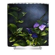 Hydrangea Violet-blue Shower Curtain