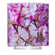 Hydrangea With Bright White Butterfly Shower Curtain