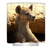 Hyena In Den Shower Curtain