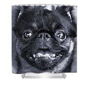 I Am Cute And I Know It Shower Curtain
