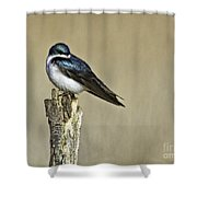 I Am Gorgeous Shower Curtain