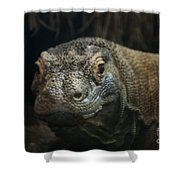 I Am Ready For My Close-up Shower Curtain