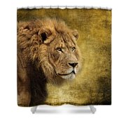 I Am The King Shower Curtain