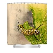 I Am Very Hungry - Monarch Caterpillar Shower Curtain