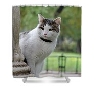 I Am Waiting You At Our Place Shower Curtain