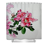 Delicate Pink Shower Curtain