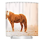 I Came Out Of Nothing To Meet You Here In Nomansland  Shower Curtain
