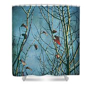 I Can't Go Just Yet Shower Curtain by Laurie Search