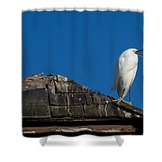 I Cry Fowl Shower Curtain
