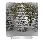 I Dream Of Trees Shower Curtain