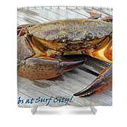 I Got Crabs At Surf City Shower Curtain