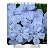 I Love Blue Flowers Shower Curtain