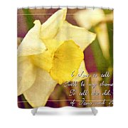 I Love To Tell The Story Shower Curtain by Michelle Greene Wheeler
