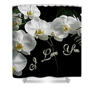 I Love You Greeting - White Moth Orchids Shower Curtain