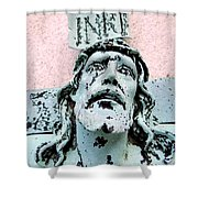 I N R E  Shower Curtain