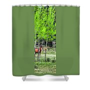 I See You 6172 Shower Curtain