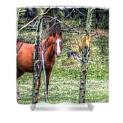 I See You 6172 Logo Shower Curtain