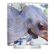 I Spy An Elephant Shower Curtain