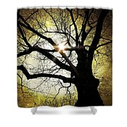 I Think I Shall Never See A Poem As Lovely As A Tree... Shower Curtain