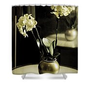 Delicate Reflection Shower Curtain