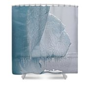 Ice Age... Shower Curtain