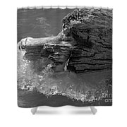 Ice Among The Floating Tree Shower Curtain