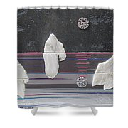 Ice Bergs Shower Curtain
