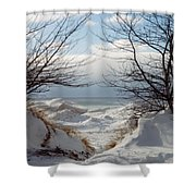 Ice Between The Trees Shower Curtain