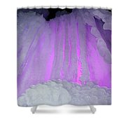 Ice Cliff Shower Curtain