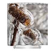 Ice Cocoons I Shower Curtain