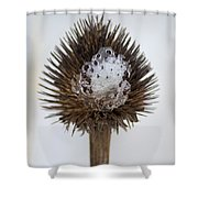 Ice Cone Shower Curtain
