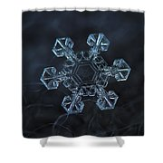 Snowflake Photo - Ice Crown Shower Curtain