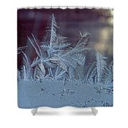 Ice Crystals Of Winter Shower Curtain