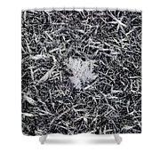 1m9343-ice Crystals On Black Ice, Tetons Shower Curtain
