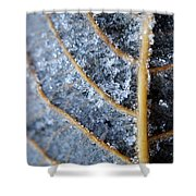 Ice Crystals On Leaf Shower Curtain