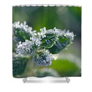 Ice Crystals With Stars Shower Curtain