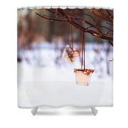 Ice Decorations IIi Shower Curtain