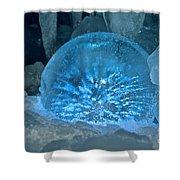 Ice Entrapment Shower Curtain