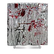 Ice Fence Shower Curtain